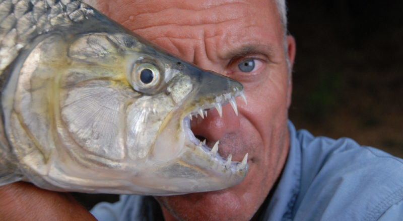 INTERVIEW: Jeremy Wade says goodbye to 'River Monsters'