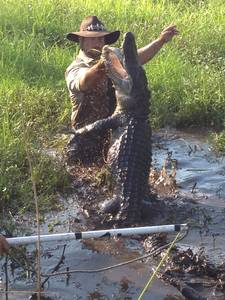 Jimmy Riffle dances with a gator — Photo courtesy of Animal Planet