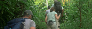 From left, Ken, Peggy, Jenkins and Roman hike into the jungle to investigate where Jenkins met Cody Roman Dial. Photo courtesy of National Geographic Channels.