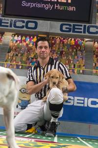 Dan Schachner, ref of 'Puppy Bowl IX' — Photo courtesy of Animal Planet / Keith Barraclough