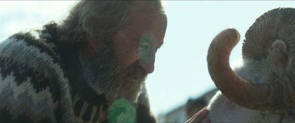 """Sigurður Sigurjónsson stars as """"Gummi"""" in Rams directed by Grímur Hákonarson. Photo courtesy of Cohen Media Group."""