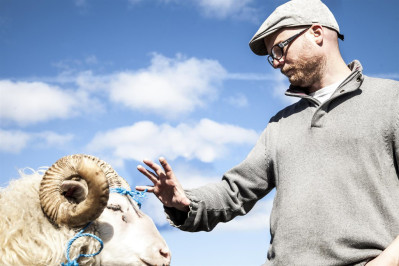 Rams director Grímur Hákonarson worked with live sheep during the making of the film. Photo courtesy of Cohen Media Group.