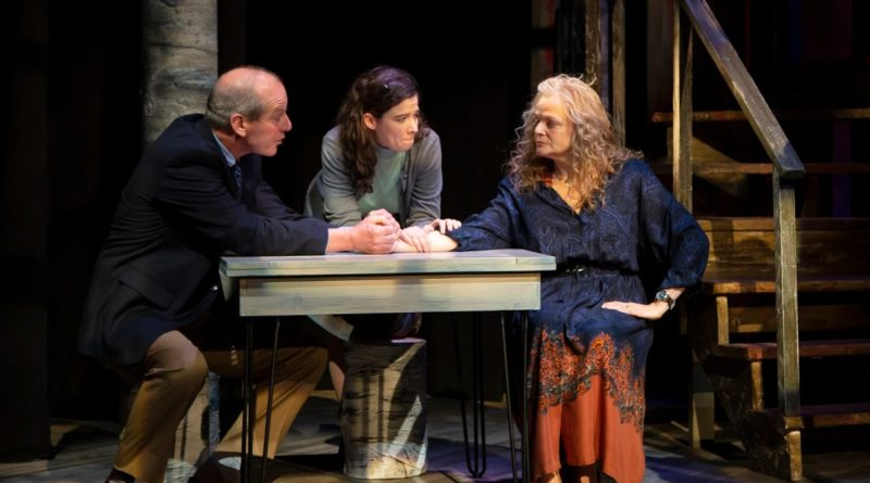 INTERVIEW: 'Midwives,' a bestseller, receives theatrical adaptation in NJ