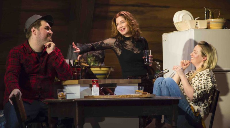 INTERVIEW: Dana Delany uses art as inspiration in 'Goodnight Nobody'