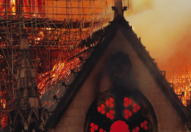 REVIEW: 'Saving Notre Dame,' a NOVA special on PBS, now available on DVD